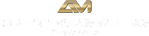 Dr. Andrey Van Ass Malheiros - Cirurgião Plástico - Página inicial